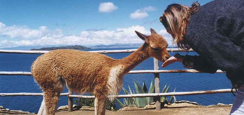 turismo - isla del sol | CATAMARAN-BOLIVIA