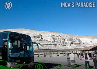 Bus Puno - Chivay turístico 1D
