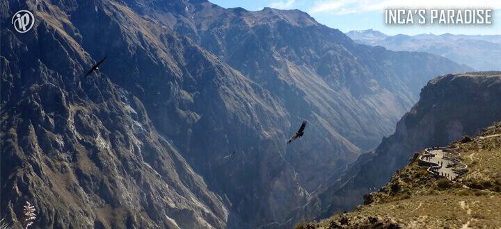 Cañon del Colca por Semana Santa en Arequipa