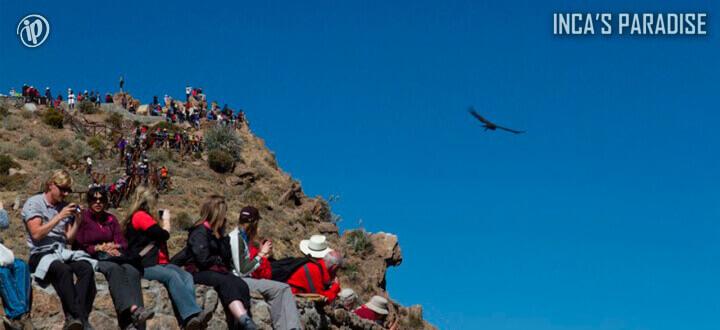 Colca Canyon por Fiestas Patrias en Arequipa